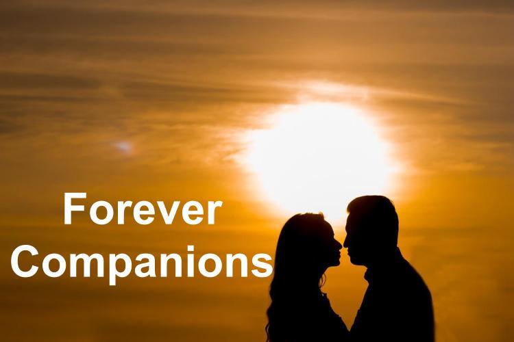 attributes of companions