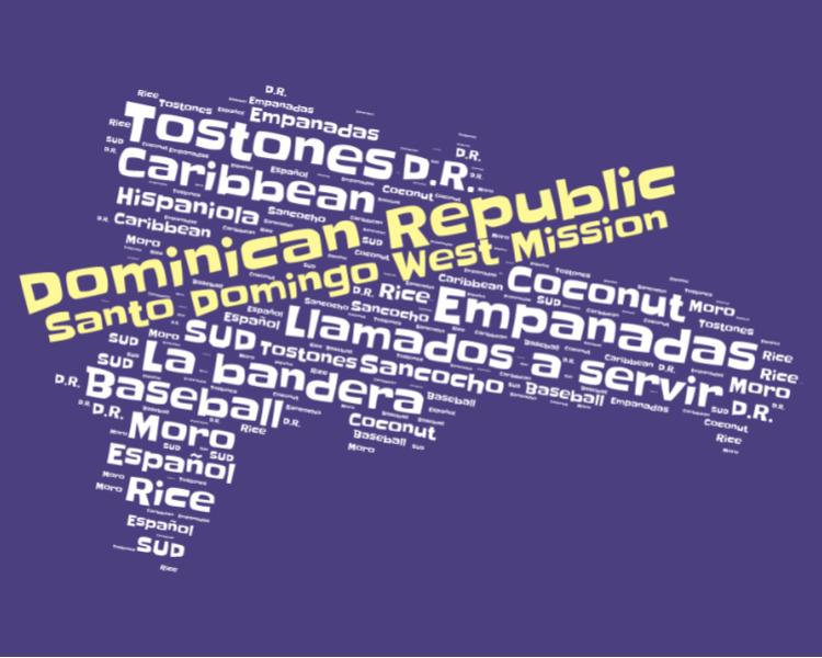 Santo Domingo West Mission LDS logo tshirt