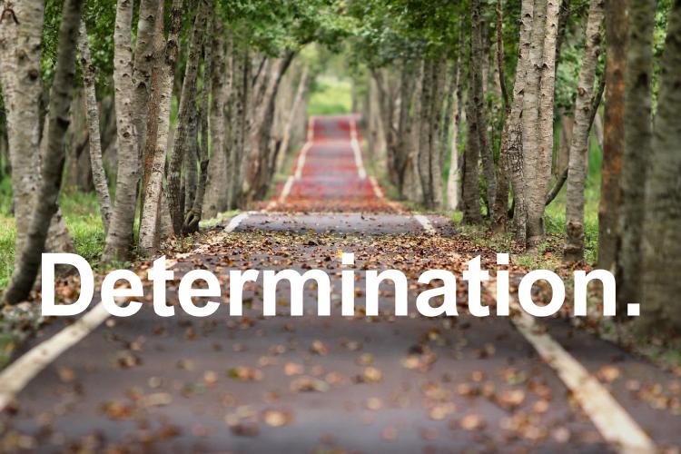 Road of Determination